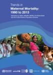Maternal cover 1990 to 2013