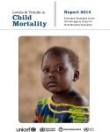 IGME Report 2015_Cover